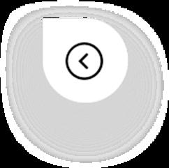 Icon Previous